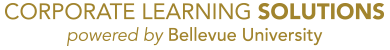 Corporate Learning Solutions - Powered by Bellevue University